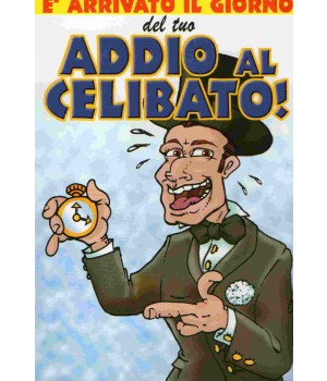 Divertentissimo biglietto addio al celibato!